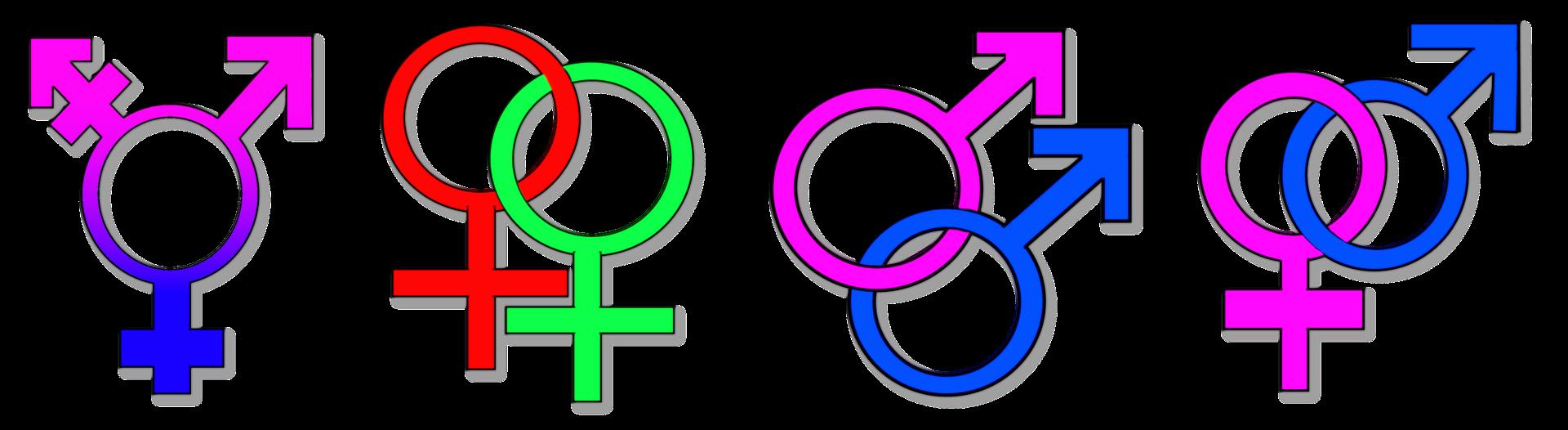 Geschlechtsmerkmale